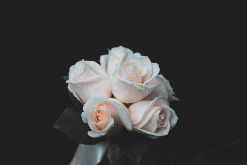 Όμορφος πυροβολισμός της άσπρης ροδαλής ανθοδέσμης λουλουδιών ελεύθερη απεικόνιση δικαιώματος