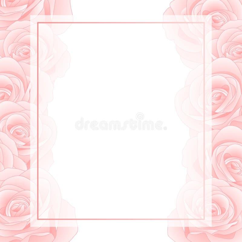Όμορφος ρόδινος αυξήθηκε σύνορα καρτών εμβλημάτων - Rosa που απομονώθηκε στο άσπρο υπόβαθρο διάνυσμα βαλεντίνων αγάπης απεικόνιση διανυσματική απεικόνιση