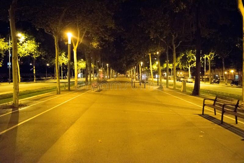 Όμορφος δρόμος πάρκων στοκ εικόνες