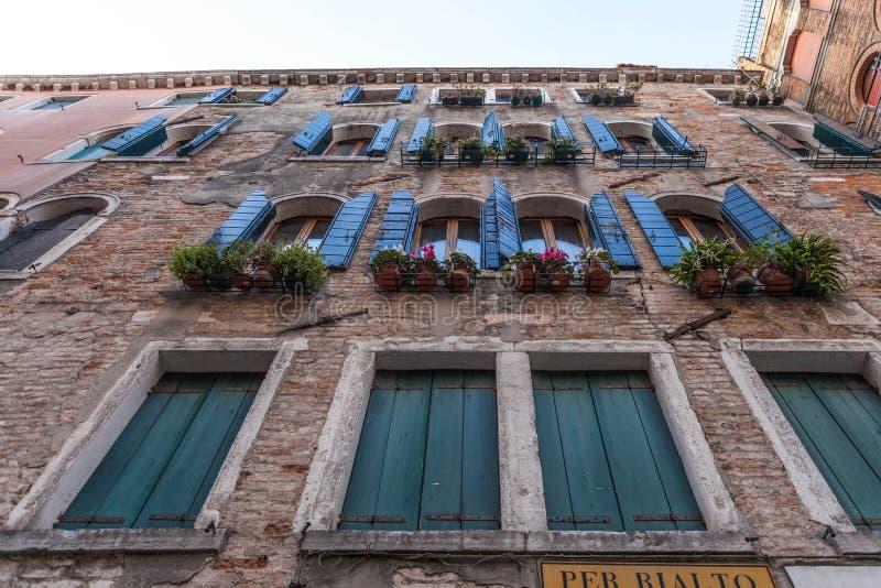Όμορφος τοίχος λουλουδιών από τη Βενετία της Ιταλίας στοκ εικόνα με δικαίωμα ελεύθερης χρήσης