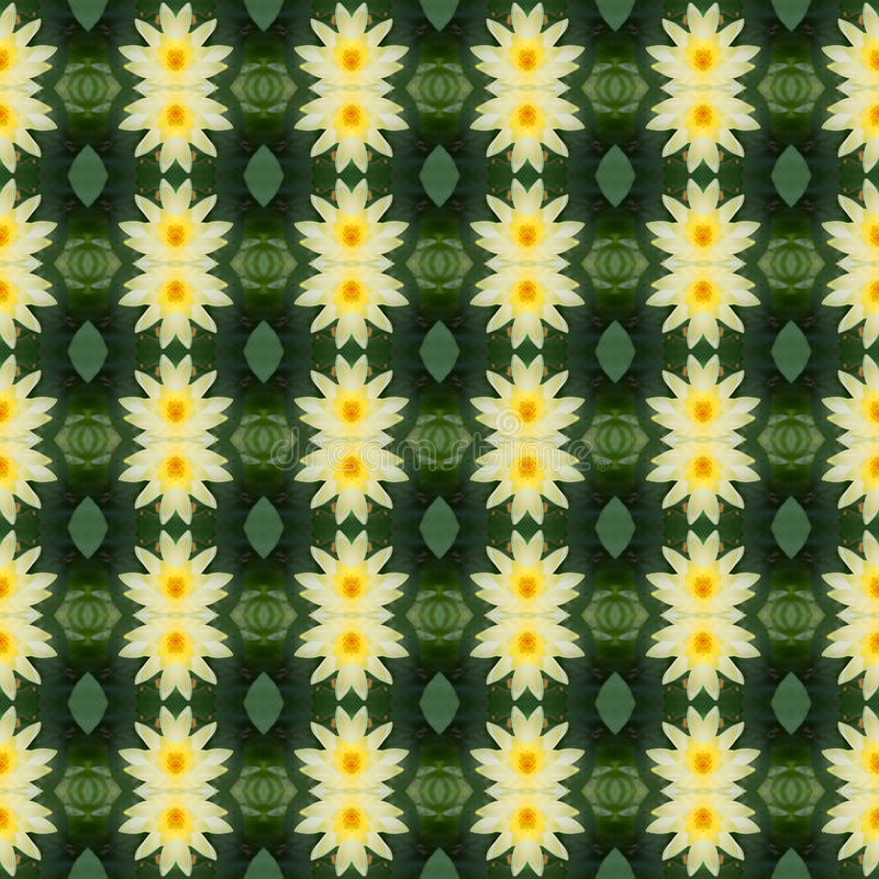 Όμορφος του λουλουδιού λωτού yello άνευ ραφής ελεύθερη απεικόνιση δικαιώματος