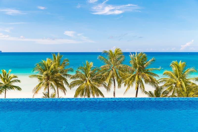 Όμορφος φοίνικας πέρα από την άσπρη αμμώδη τροπική παραλία Θάλασσα και Bor στοκ φωτογραφία με δικαίωμα ελεύθερης χρήσης