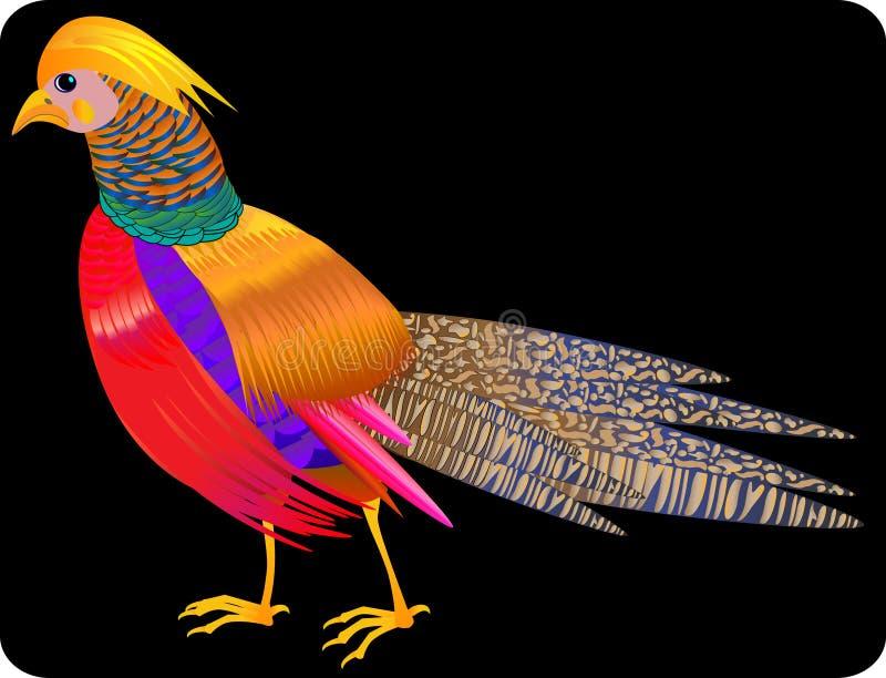 Όμορφος, φωτεινός, πουλί, απεικόνιση διανυσματική απεικόνιση