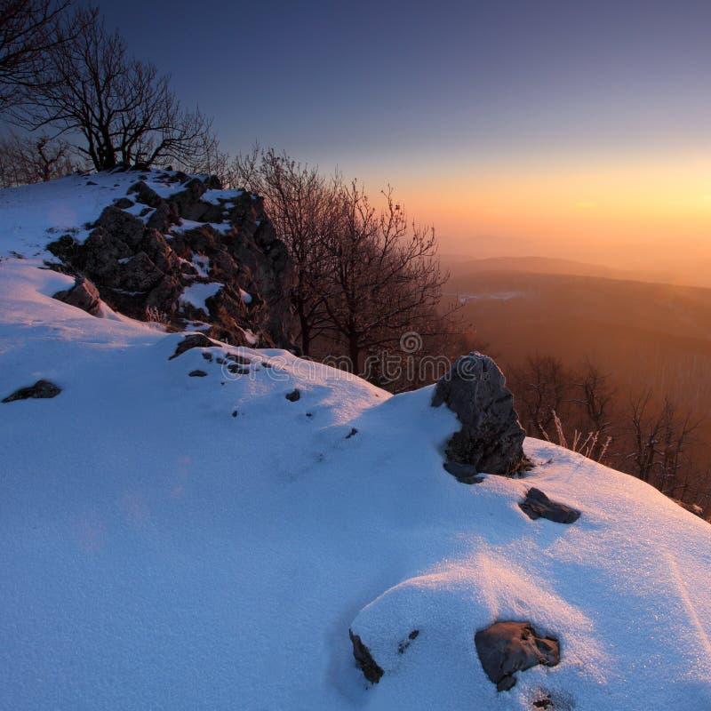 όμορφος χειμώνας δέντρων η&la στοκ φωτογραφίες