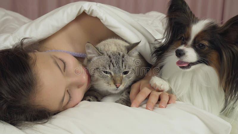 Όμορφος ύπνος κοριτσιών εφήβων γλυκά στο κρεβάτι με το σκυλί και τη γάτα στοκ εικόνες