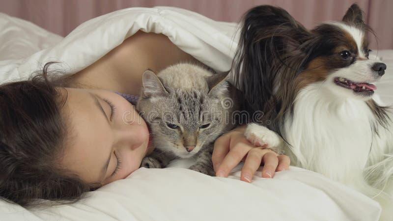 Όμορφος ύπνος κοριτσιών εφήβων γλυκά στο κρεβάτι με το σκυλί και τη γάτα στοκ εικόνες με δικαίωμα ελεύθερης χρήσης