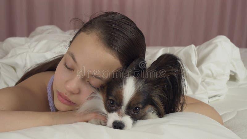 Όμορφος ύπνος κοριτσιών εφήβων γλυκά στο κρεβάτι με το σκυλί Papillon στοκ φωτογραφία