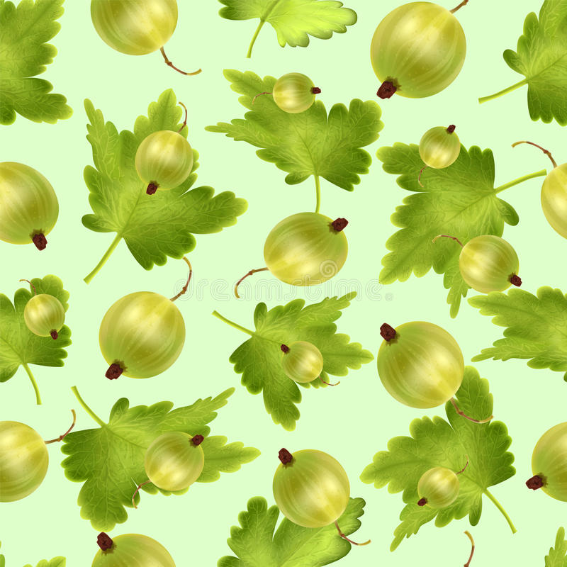 Όμορφο άνευ ραφής σχέδιο με το ρεαλιστικό πράσινο ριβήσιο σε ένα πράσινο υπόβαθρο ελεύθερη απεικόνιση δικαιώματος