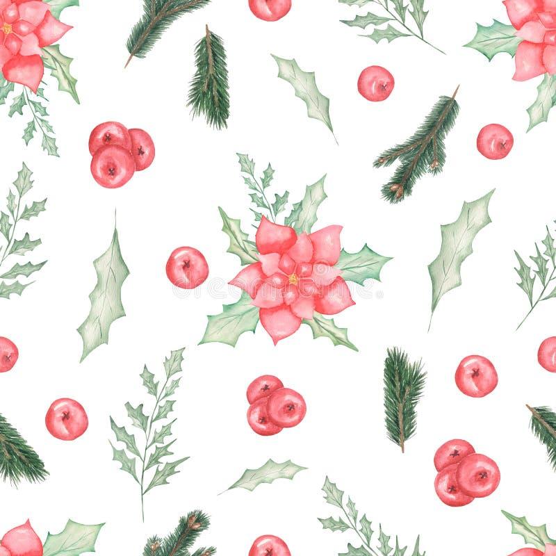 Όμορφο άνευ ραφής σχέδιο Watercolor με το poinsettia Χριστουγέννων με τα φύλλα και τα μούρα, κλάδοι ελεύθερη απεικόνιση δικαιώματος
