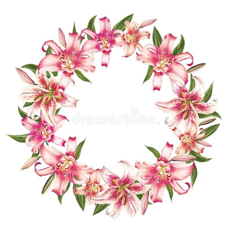 Όμορφο άσπρο και ρόδινο στεφάνι κρίνων r Floral τυπωμένη ύλη Σχέδιο δεικτών διανυσματική απεικόνιση