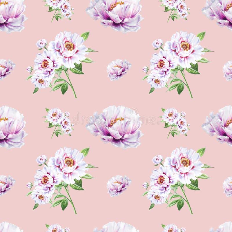 Όμορφο άσπρο peony άνευ ραφής σχέδιο r Floral τυπωμένη ύλη Σχέδιο δεικτών απεικόνιση αποθεμάτων