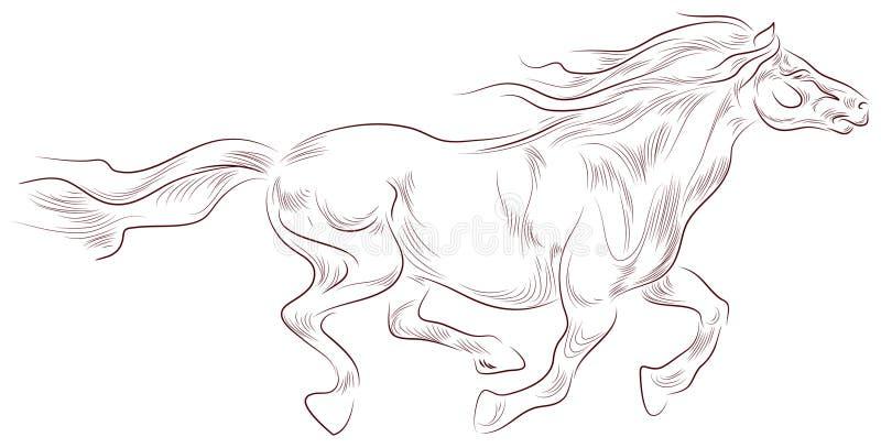 όμορφο άλογο ελεύθερη απεικόνιση δικαιώματος
