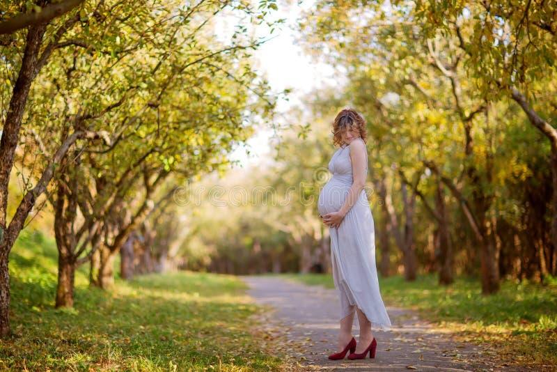 όμορφο έγκυο θηλυκό το φθινόπωρο στοκ εικόνες