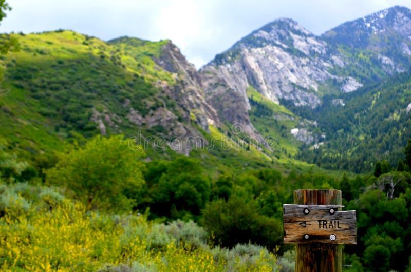 Όμορφο ίχνος βουνών την άνοιξη στοκ εικόνα με δικαίωμα ελεύθερης χρήσης