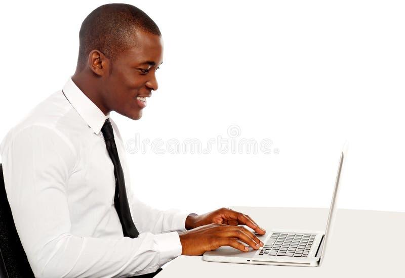 Όμορφο ανώτατο στέλεχος επιχείρησης που εργάζεται στο lap-top στοκ εικόνες με δικαίωμα ελεύθερης χρήσης
