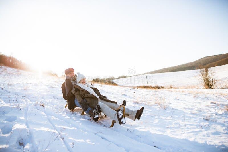 Όμορφο ανώτερο ζεύγος στο έλκηθρο που έχει τη διασκέδαση, χειμερινή ημέρα στοκ εικόνες
