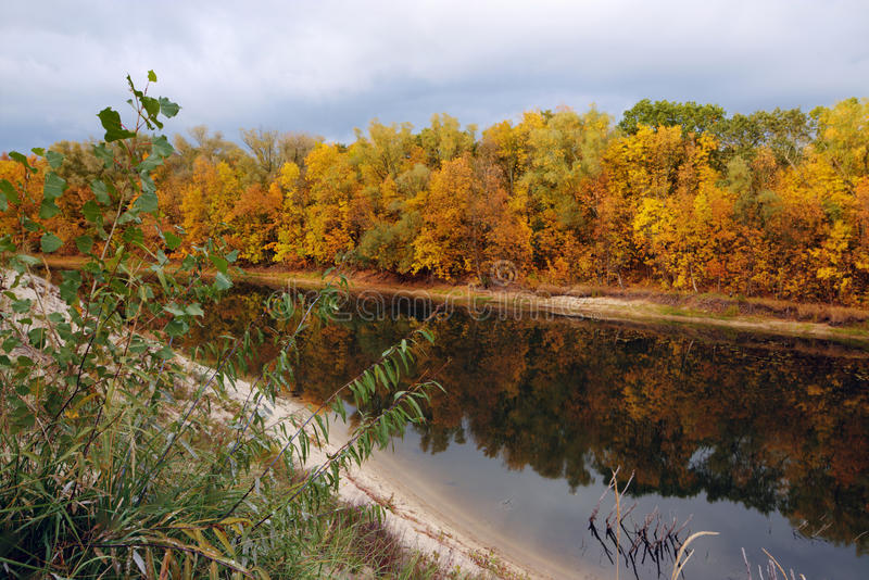Όμορφο απόγευμα στο φθινοπωρινό πάρκο στοκ εικόνες με δικαίωμα ελεύθερης χρήσης