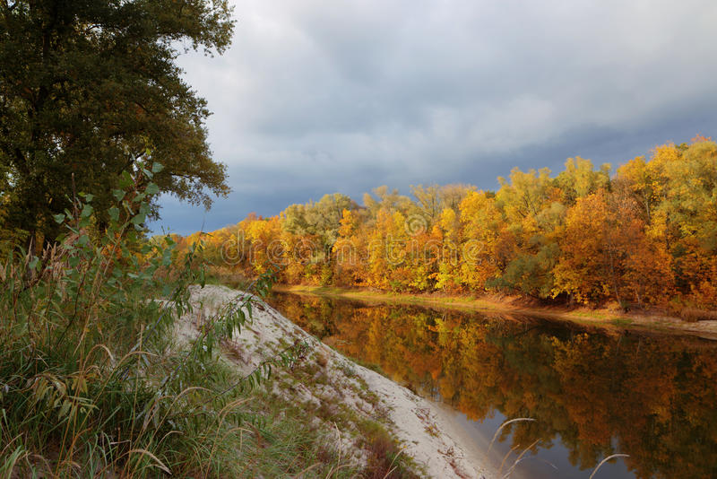 Όμορφο απόγευμα στο φθινοπωρινό πάρκο στοκ φωτογραφίες