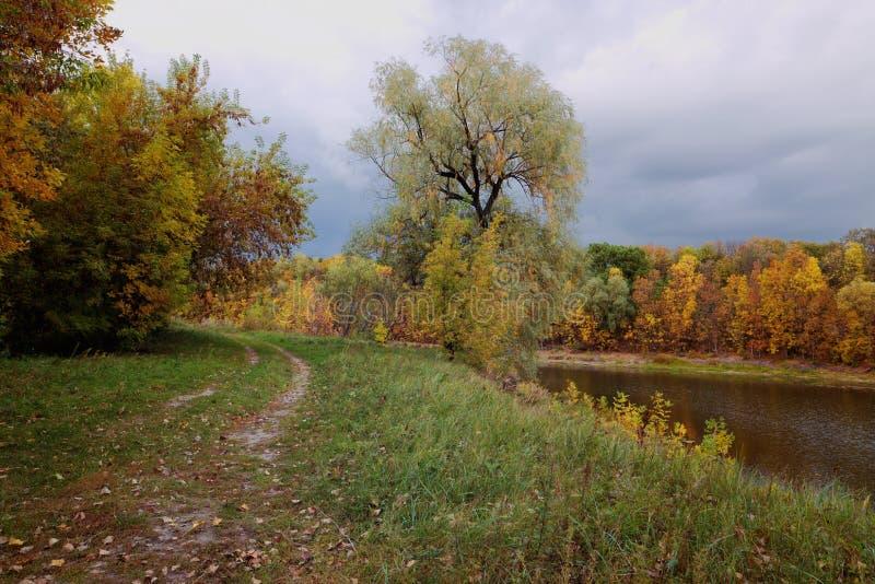 Όμορφο απόγευμα στο φθινοπωρινό πάρκο στοκ εικόνες