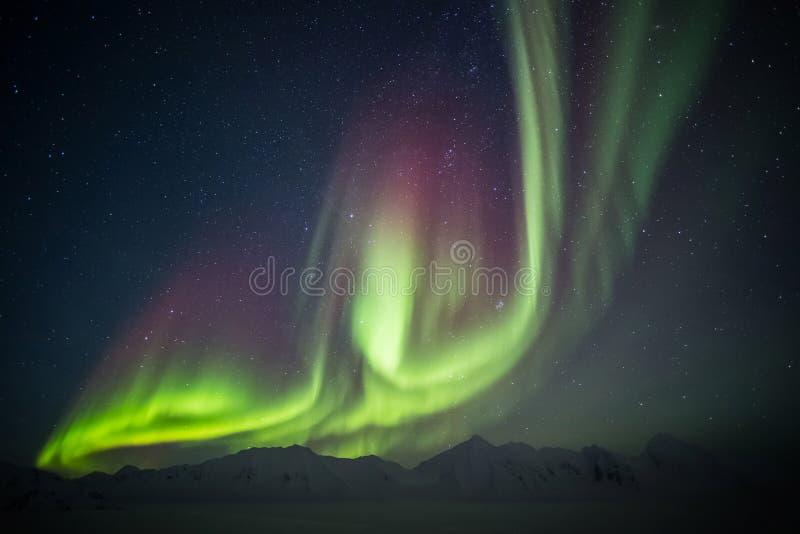Όμορφο αρκτικό τοπίο παγετώνων με τα βόρεια φω'τα - Spitsbergen, Svalbard στοκ εικόνα με δικαίωμα ελεύθερης χρήσης
