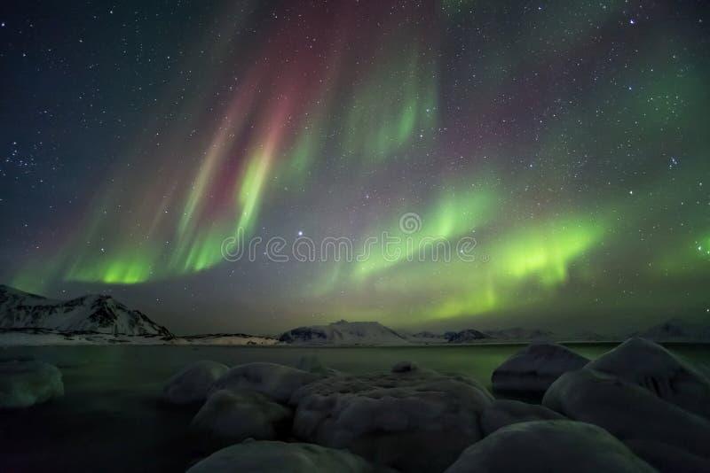 Όμορφο αρκτικό τοπίο φιορδ με τα βόρεια φω'τα - Spitsbergen, Svalbard στοκ φωτογραφία με δικαίωμα ελεύθερης χρήσης