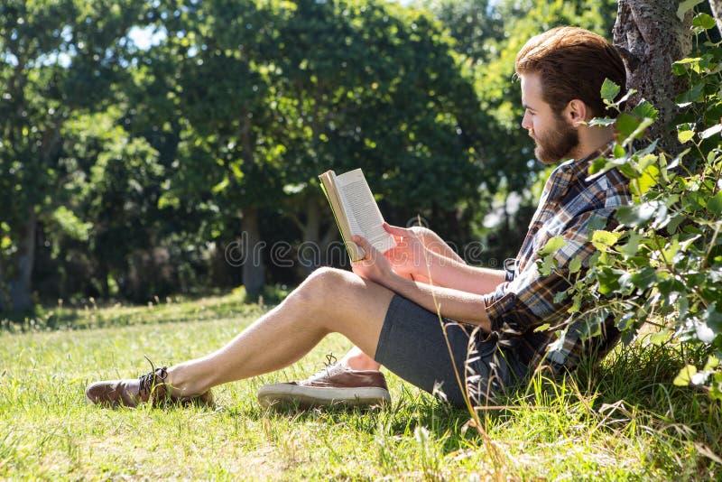 Όμορφο βιβλίο ανάγνωσης hipster στο πάρκο στοκ εικόνα με δικαίωμα ελεύθερης χρήσης