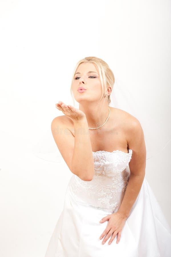 όμορφο γαμήλιο λευκό πορ στοκ εικόνες