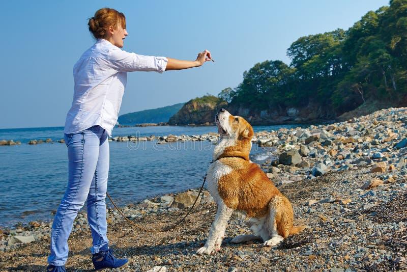 Όμορφο γυναικών με το σκυλί της κοντά στη θάλασσα στοκ φωτογραφία με δικαίωμα ελεύθερης χρήσης