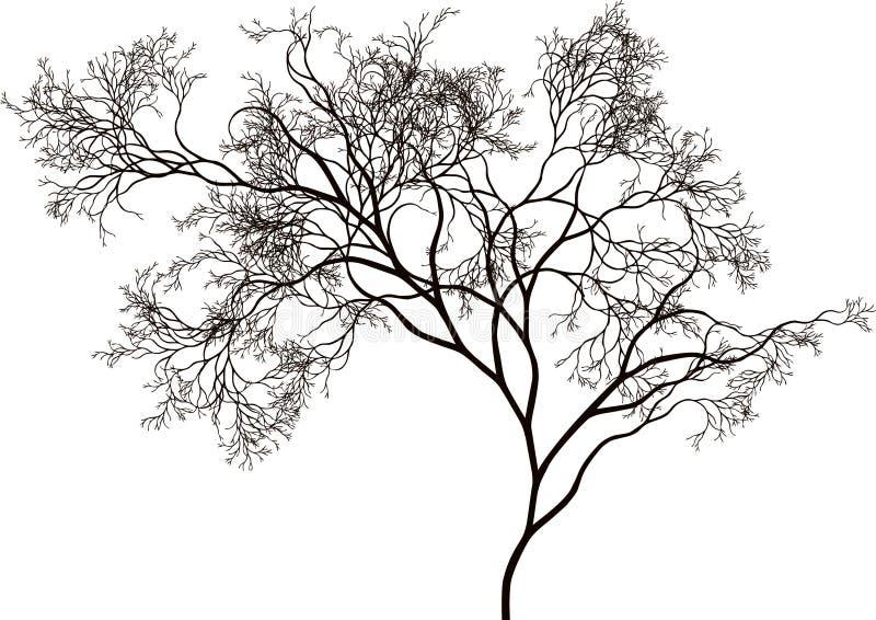 όμορφο δέντρο διανυσματική απεικόνιση