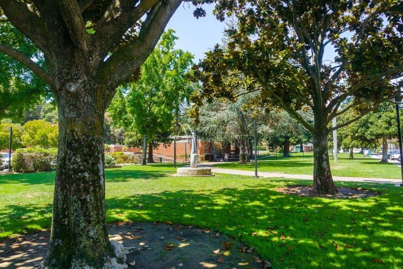 Όμορφο δημόσιο πάρκο με τα ώριμα δέντρα Magnolia στο στο κέντρο της πόλης Los Gatos, κοντά στο πολιτικό κέντρο, περιοχή κόλπων το στοκ εικόνα με δικαίωμα ελεύθερης χρήσης