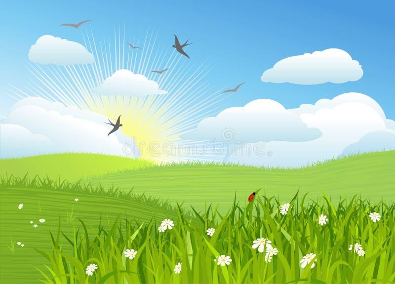 όμορφο διάνυσμα ήλιων ημέρα& ελεύθερη απεικόνιση δικαιώματος