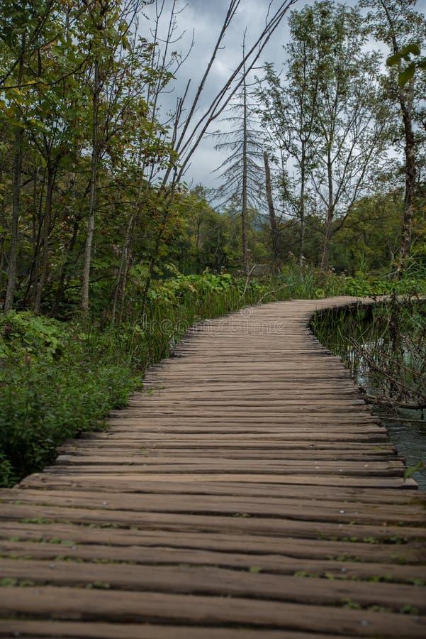 Όμορφο εθνικό πάρκο στην Κροατία, λίμνες Plitvice στοκ εικόνες