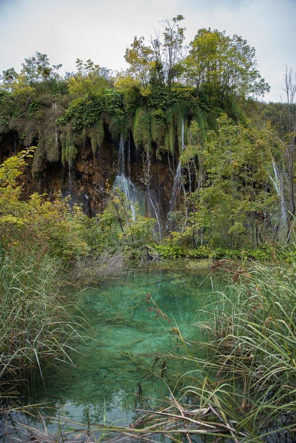 Όμορφο εθνικό πάρκο στην Κροατία, λίμνες Plitvice στοκ φωτογραφία