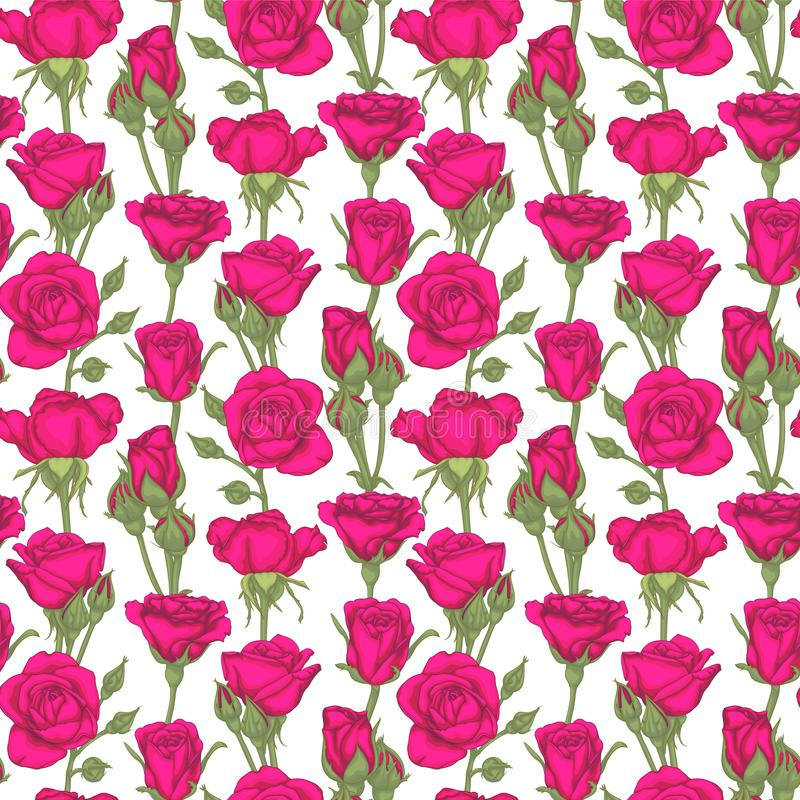 Όμορφο εκλεκτής ποιότητας άνευ ραφής σχέδιο με τα τριαντάφυλλα, τα μπουμπούκια τριαντάφυλλου, τα φύλλα και τους μίσχους ευχετήρια απεικόνιση αποθεμάτων