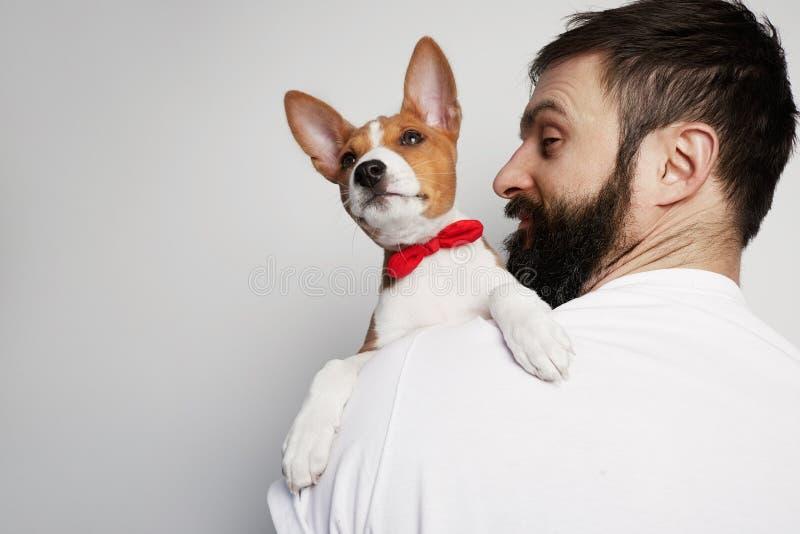 Όμορφο ευτυχές άτομο που αγκαλιάζει στοργικά και που αγκαλιάζει το σκυλί κουταβιών basenji του, στενή φιλία σε ένα άσπρο κλίμα στοκ φωτογραφία με δικαίωμα ελεύθερης χρήσης