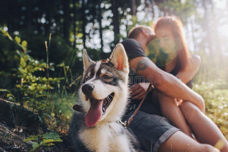 Όμορφο ζεύγος που στηρίζεται στο δάσος στοκ φωτογραφία