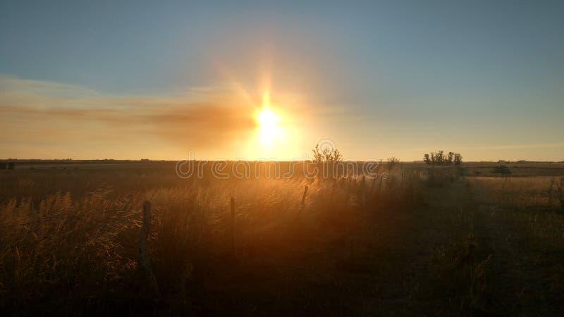 όμορφο ηλιοβασίλεμα στον τομέα με το μπλε ουρανό και το πορτοκάλι στοκ εικόνες