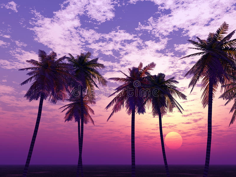 όμορφο ηλιοβασίλεμα ελεύθερη απεικόνιση δικαιώματος