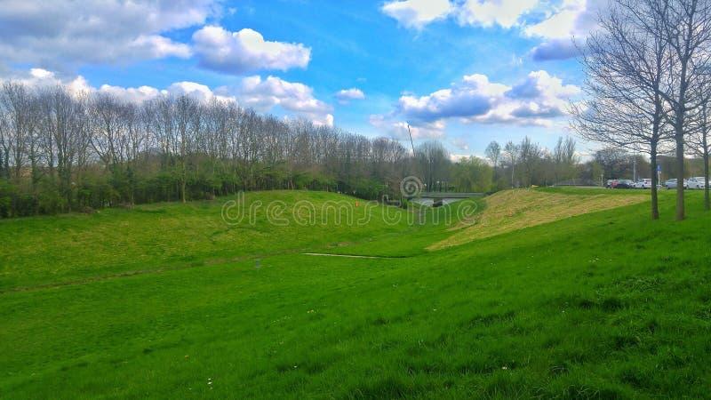 Όμορφο ηλιόλουστο υπόβαθρο τομέων χλόης ημέρας με τα μπλε sky's και το σύννεφο στοκ εικόνες με δικαίωμα ελεύθερης χρήσης