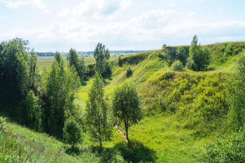 Όμορφο θερινό λατομείο με την πράσινα χλόη και τα δέντρα στοκ εικόνες