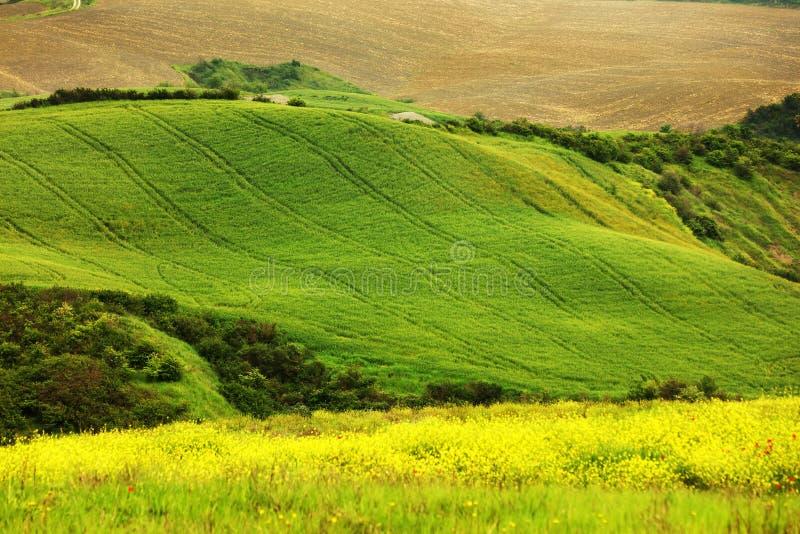 Όμορφο θερινό τοπίο στην Τοσκάνη στοκ φωτογραφία με δικαίωμα ελεύθερης χρήσης