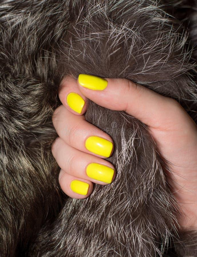 Όμορφο κίτρινο μανικιούρ και γούνες στοκ φωτογραφίες