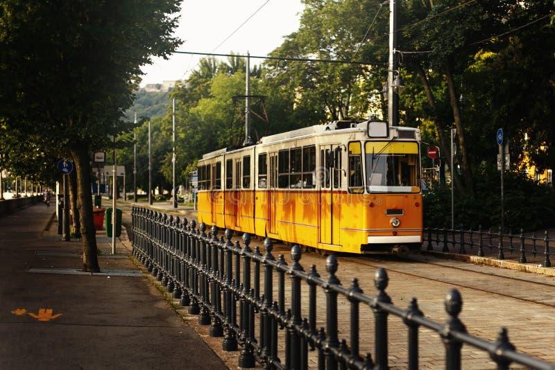 Όμορφο κίτρινο παλαιό τραμ στο πράσινο πάρκο, δημόσιες συγκοινωνίες, Budap στοκ εικόνες