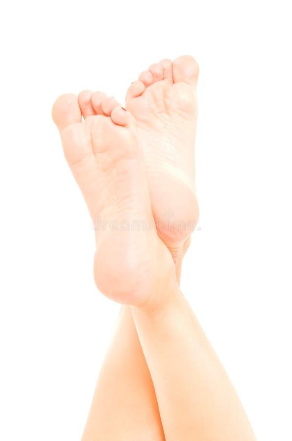 Όμορφο καλά-καλλωπισμένο θηλυκό πόδι στοκ εικόνα