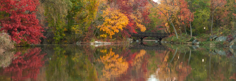 όμορφο κεντρικό πάρκο πανοράματος πτώσης στοκ φωτογραφίες