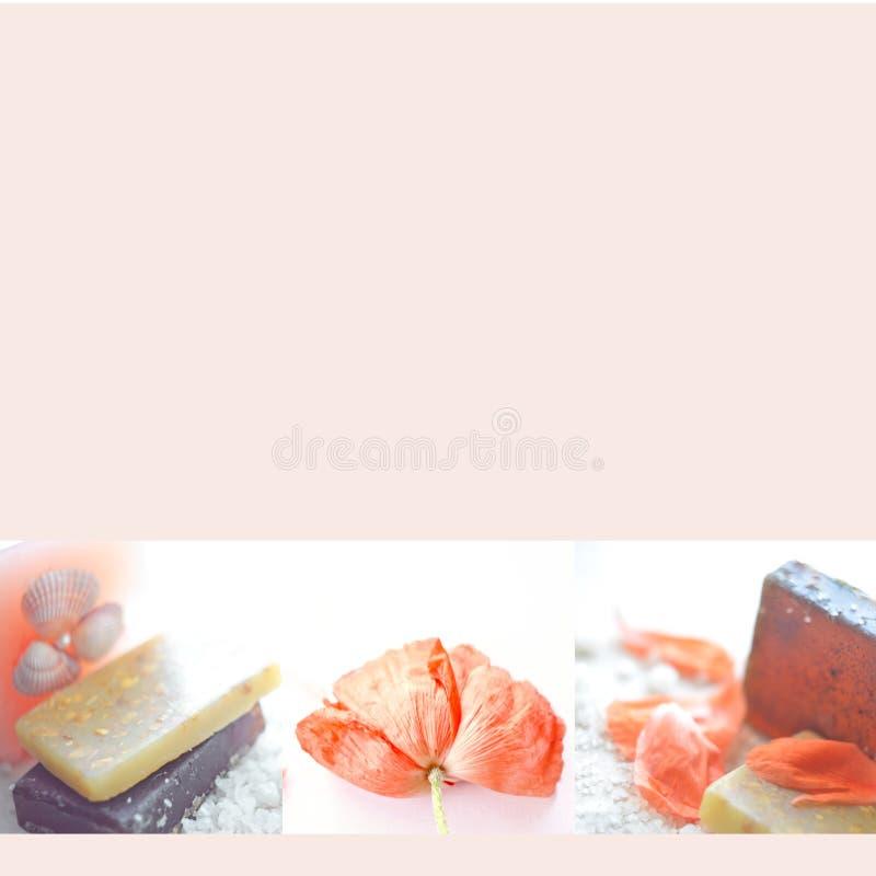 Όμορφο κενό με το χειροποίητο σαπούνι, το λουλούδι παπαρουνών και το άλας θάλασσας Wellness και χαλαρώνοντας έννοιες ή διαφήμιση  στοκ εικόνες