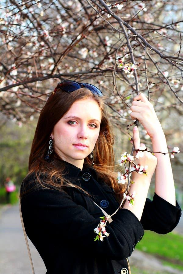 Όμορφο κορίτσι κοντά στο άνθος ενός κλάδου δέντρων στοκ εικόνες
