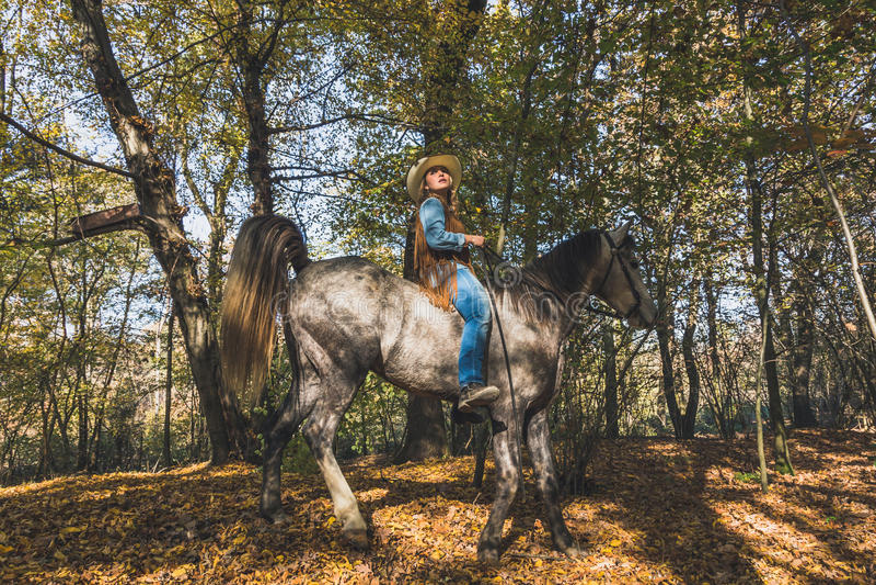Όμορφο κορίτσι που οδηγά το γκρίζο άλογό της στοκ εικόνες