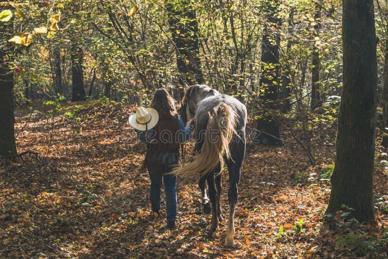 Όμορφο κορίτσι που υπερασπίζεται το γκρίζο άλογό της στοκ φωτογραφίες με δικαίωμα ελεύθερης χρήσης