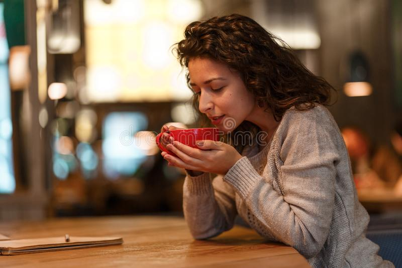 Όμορφο κορίτσι στον γκρίζο πλεκτό φρέσκο καυτό καφέ πουλόβερ sniffies από το φλυτζάνι στο εστιατόριο στενό πορτρέτο επάνω ροδανιλ στοκ φωτογραφίες με δικαίωμα ελεύθερης χρήσης